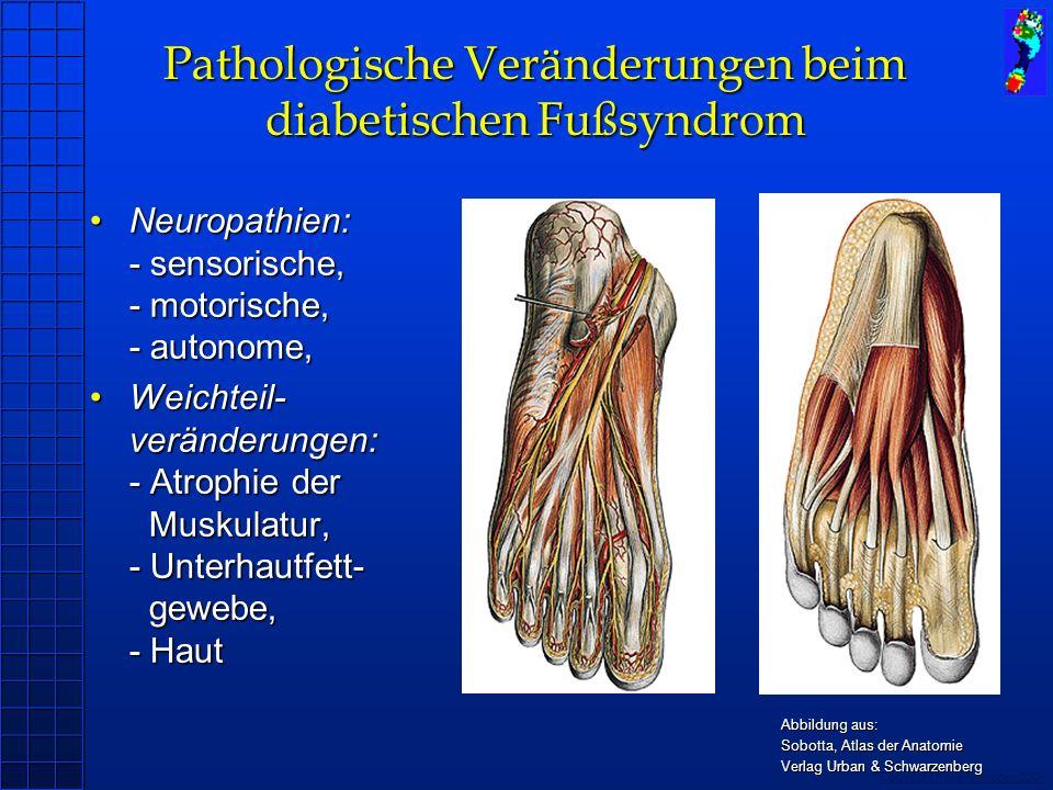 Pathologische Veränderungen beim diabetischen Fußsyndrom