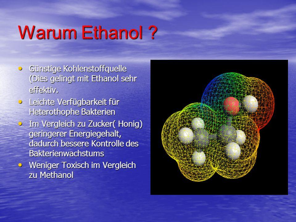 Warum Ethanol Günstige Kohlenstoffquelle (Dies gelingt mit Ethanol sehr effektiv. Leichte Verfügbarkeit für Heterothophe Bakterien.