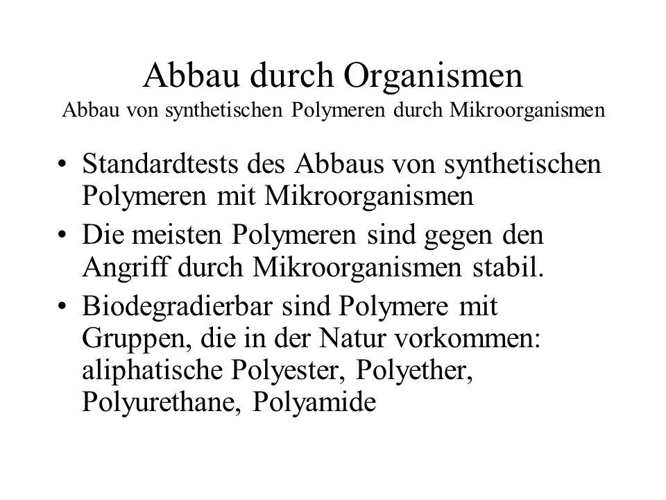 Abbau durch Organismen Abbau von synthetischen Polymeren durch Mikroorganismen