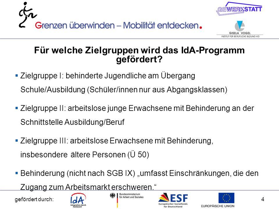 Für welche Zielgruppen wird das IdA-Programm gefördert