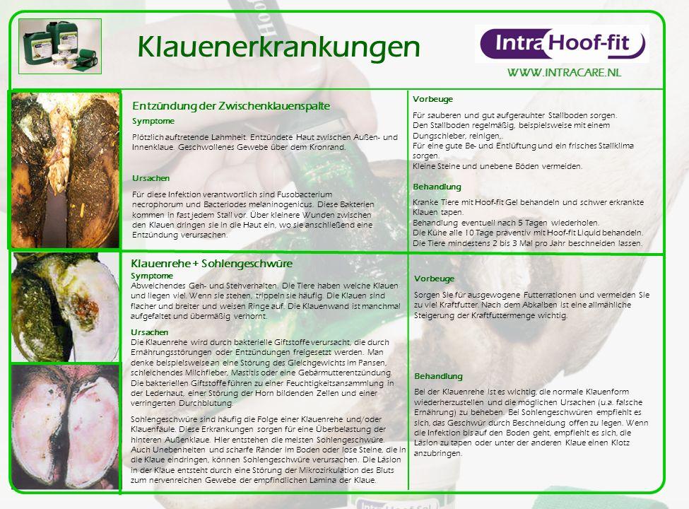 Klauenerkrankungen WWW.INTRACARE.NL