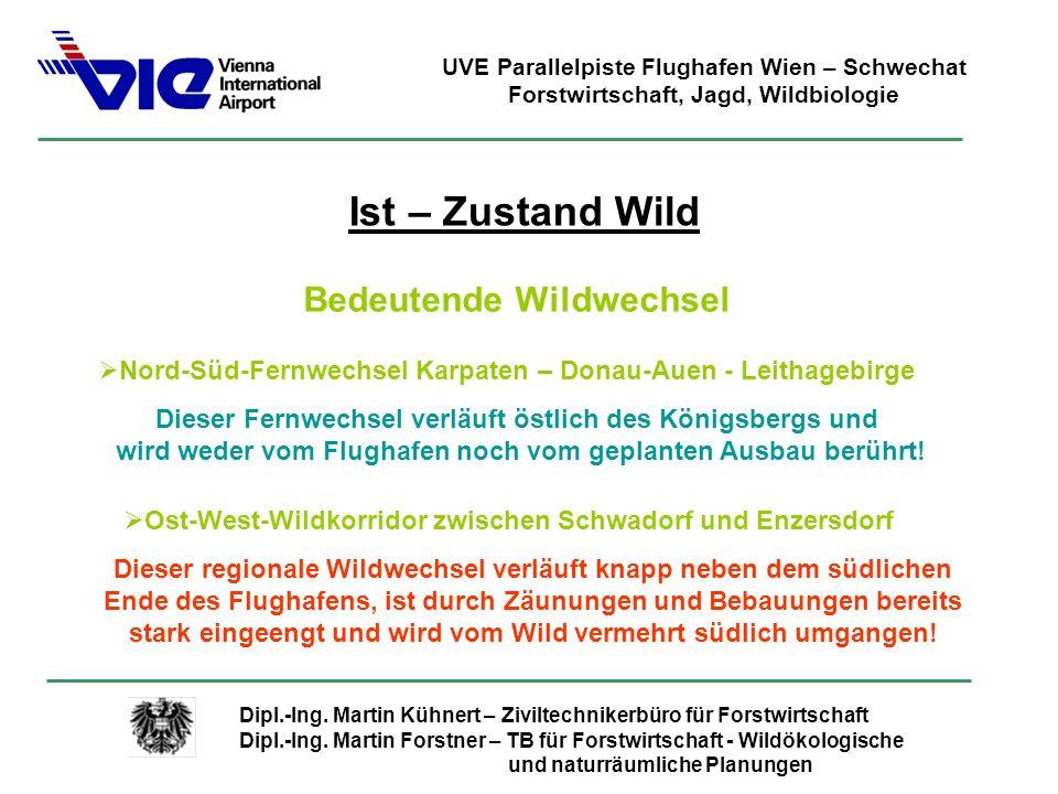 Ist – Zustand Wild Bedeutende Wildwechsel