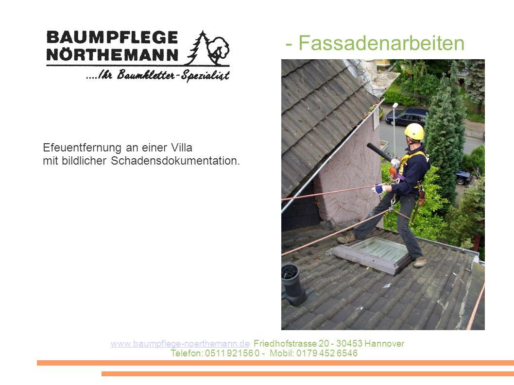 - Fassadenarbeiten Efeuentfernung an einer Villa