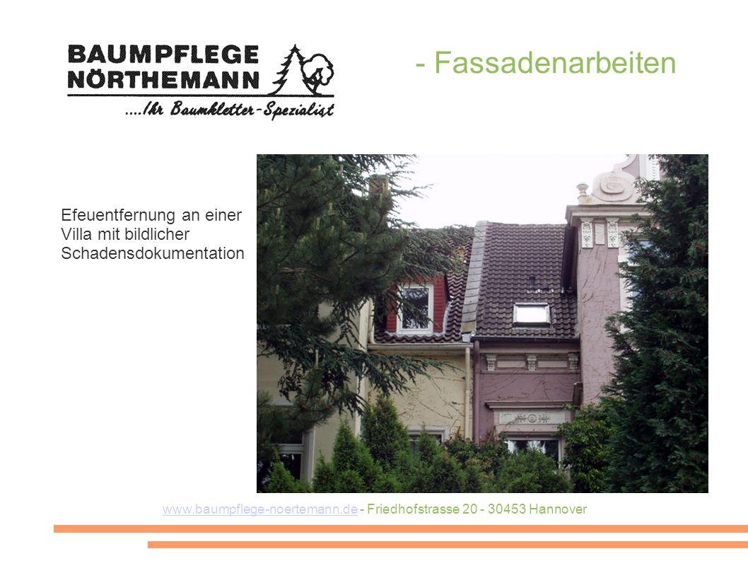 www.baumpflege-noertemann.de - Friedhofstrasse 20 - 30453 Hannover