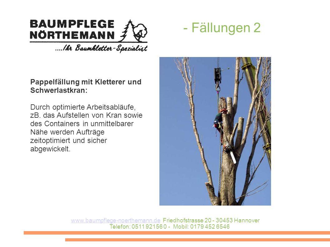 - Fällungen 2 Pappelfällung mit Kletterer und Schwerlastkran: