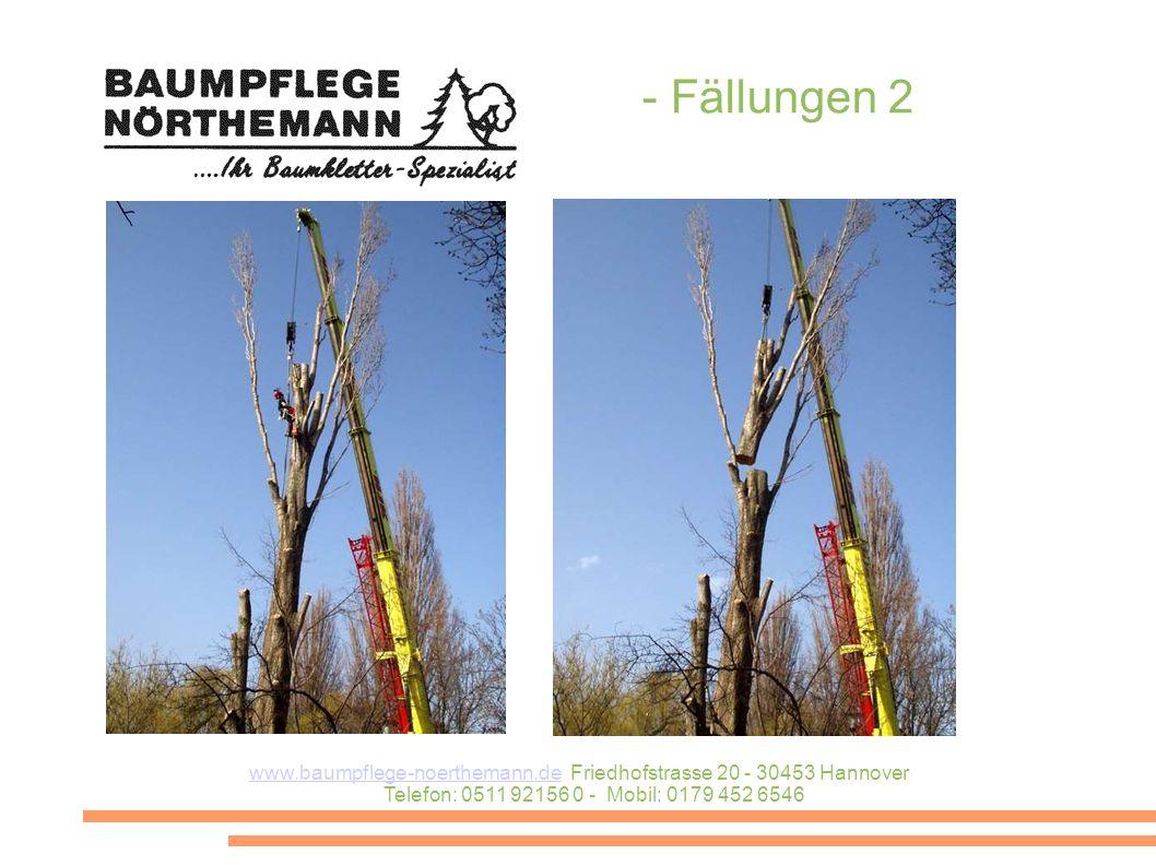 - Fällungen 2 www.baumpflege-noerthemann.de Friedhofstrasse 20 - 30453 Hannover Telefon: 0511 92156 0 - Mobil: 0179 452 6546.