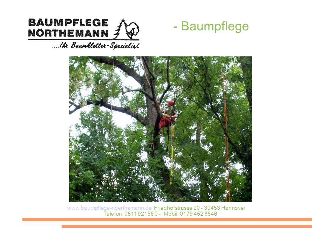 - Baumpflege www.baumpflege-noerthemann.de Friedhofstrasse 20 - 30453 Hannover Telefon: 0511 92156 0 - Mobil: 0179 452 6546.