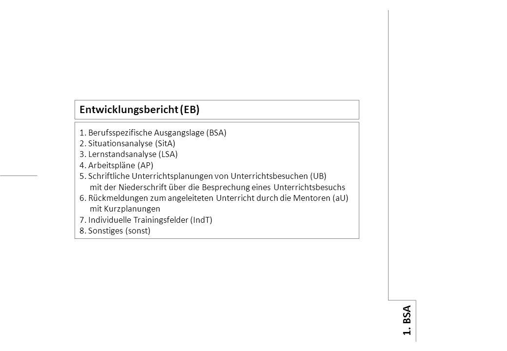 Entwicklungsbericht (EB)