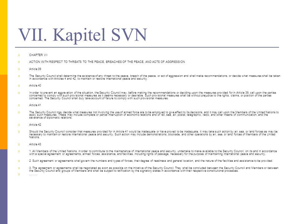 VII. Kapitel SVN CHAPTER VII