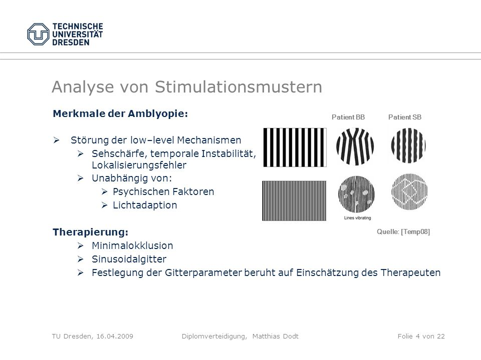 Analyse von Stimulationsmustern
