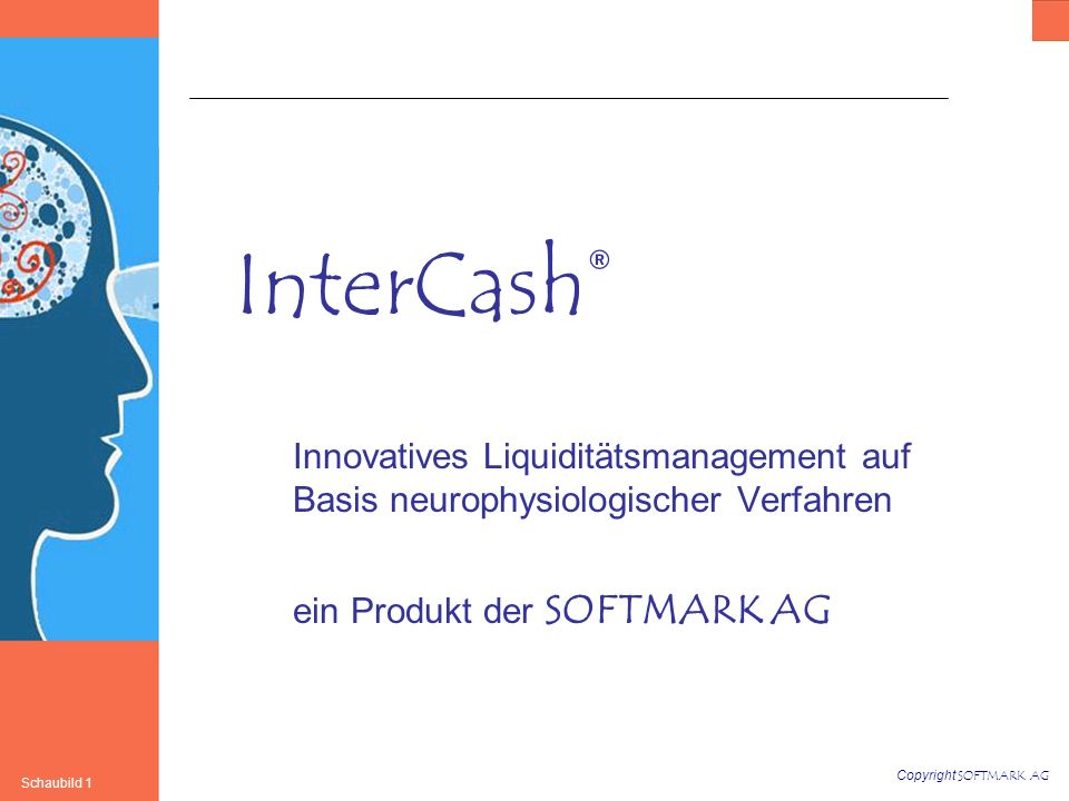 InterCash® Innovatives Liquiditätsmanagement auf Basis neurophysiologischer Verfahren.