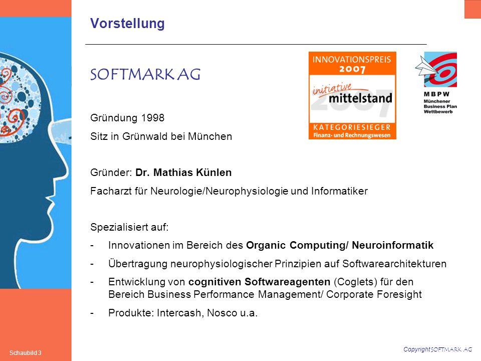 SOFTMARK AG Vorstellung Gründung 1998 Sitz in Grünwald bei München