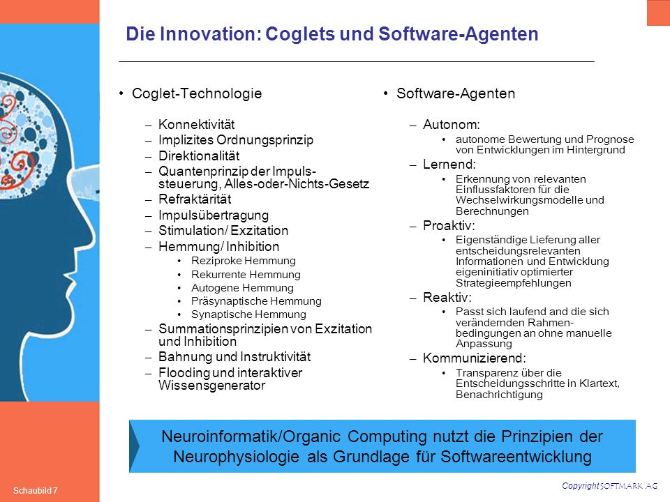 Die Innovation: Coglets und Software-Agenten
