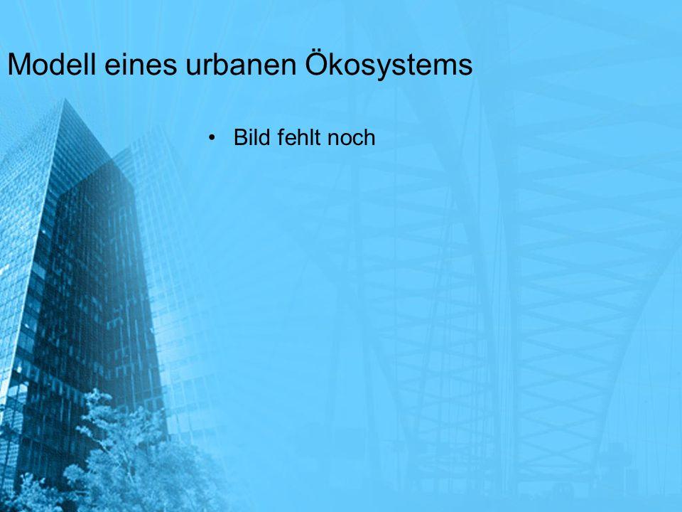 Modell eines urbanen Ökosystems