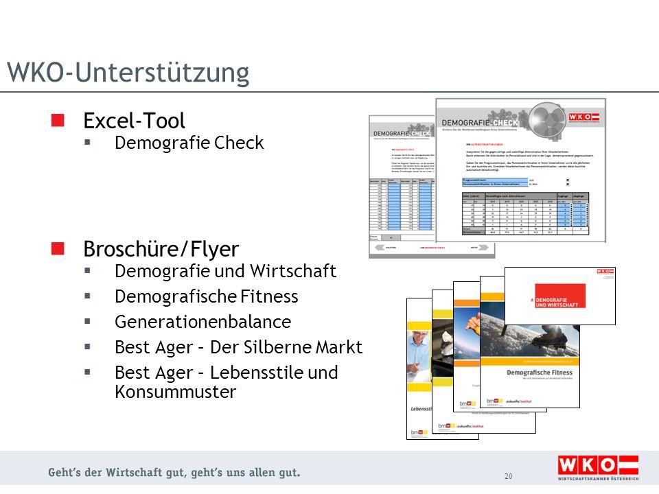WKO-Unterstützung Excel-Tool Broschüre/Flyer Demografie Check