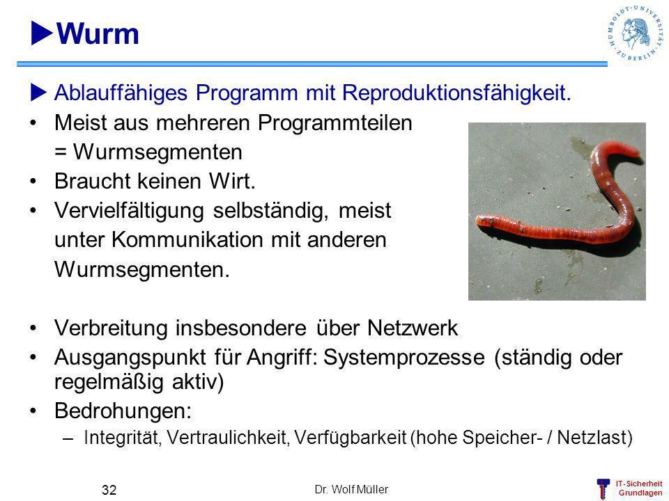 Wurm Ablauffähiges Programm mit Reproduktionsfähigkeit.
