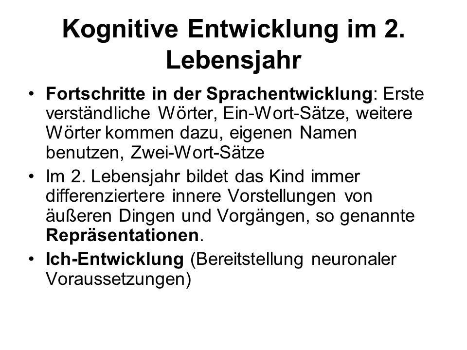 Kognitive Entwicklung im 2. Lebensjahr