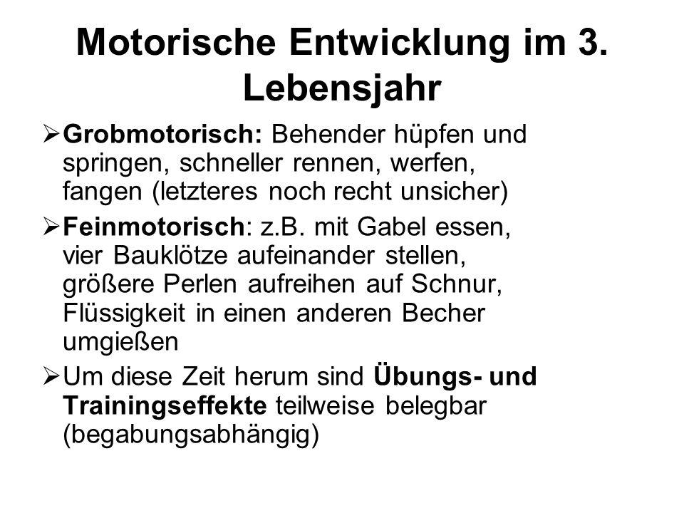 Motorische Entwicklung im 3. Lebensjahr