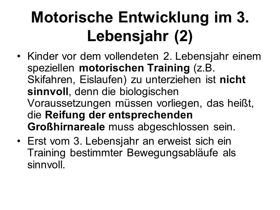 Motorische Entwicklung im 3. Lebensjahr (2)