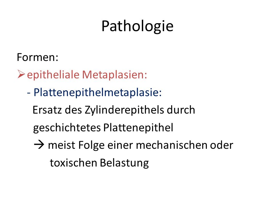 Pathologie Formen: epitheliale Metaplasien: