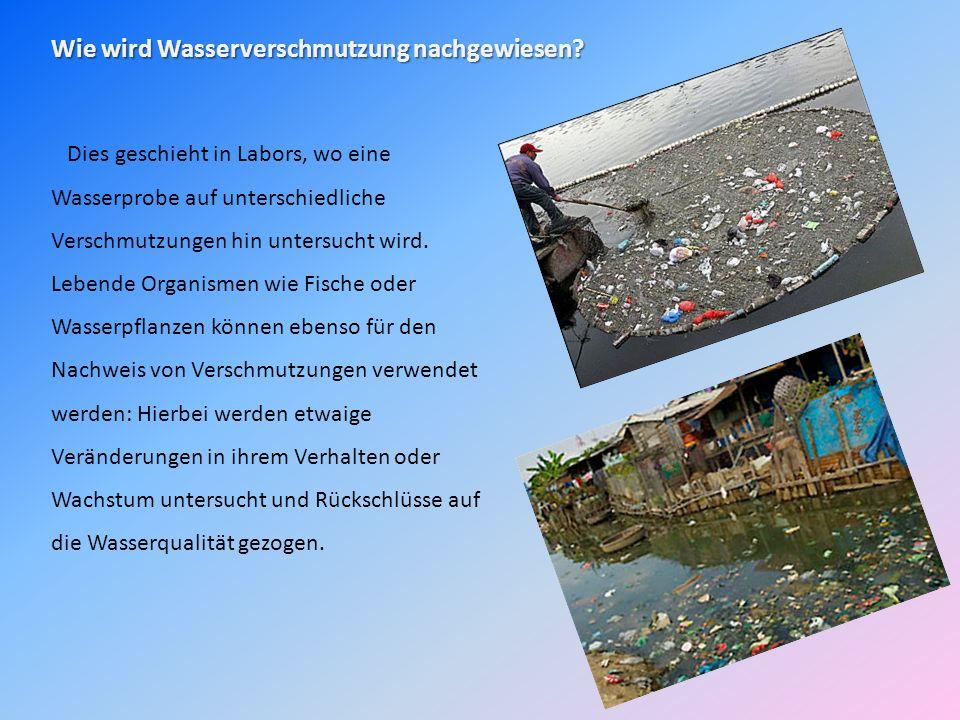 Wie wird Wasserverschmutzung nachgewiesen
