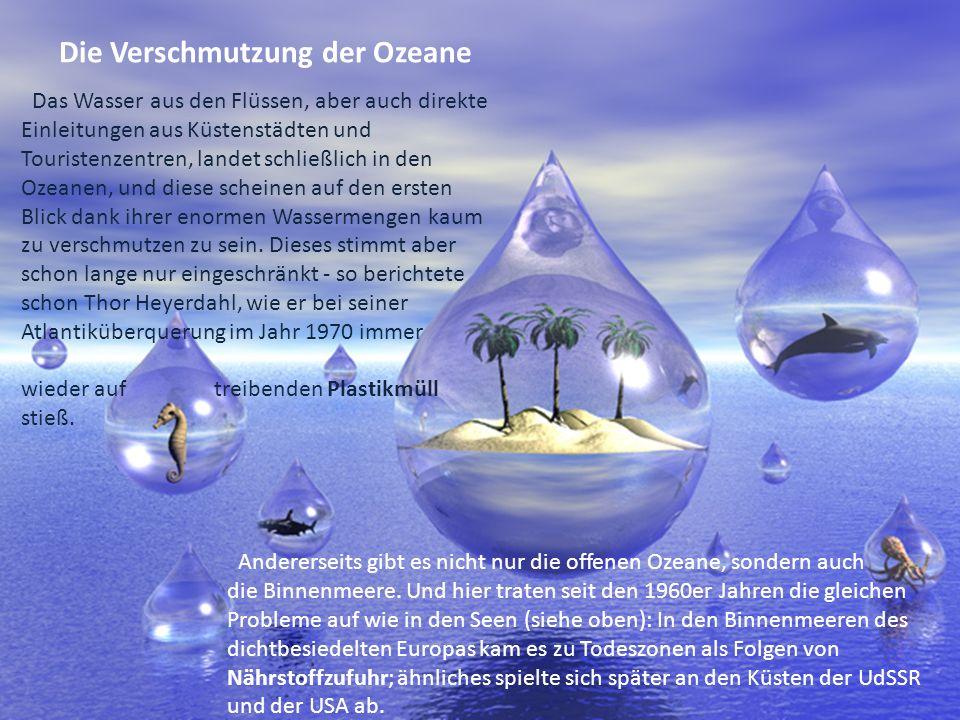 Die Verschmutzung der Ozeane