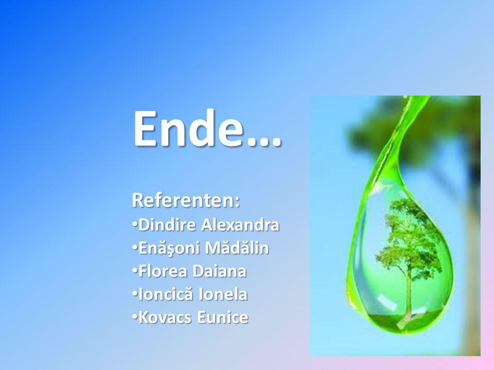 Ende… Referenten: Dindire Alexandra Enăşoni Mădălin Florea Daiana