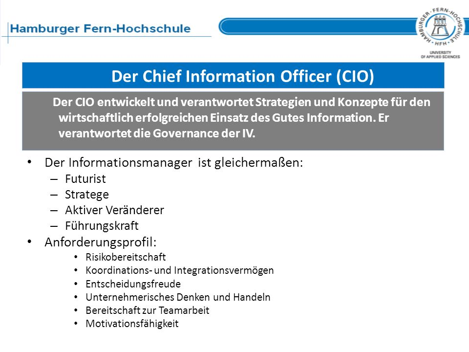 Der Chief Information Officer (CIO)