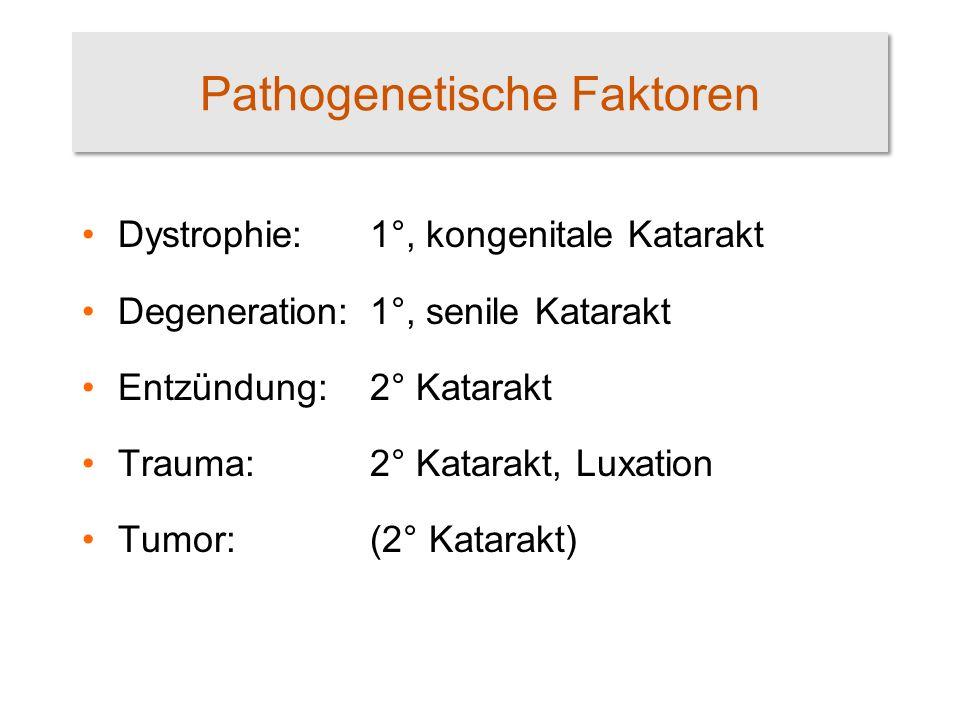 Pathogenetische Faktoren