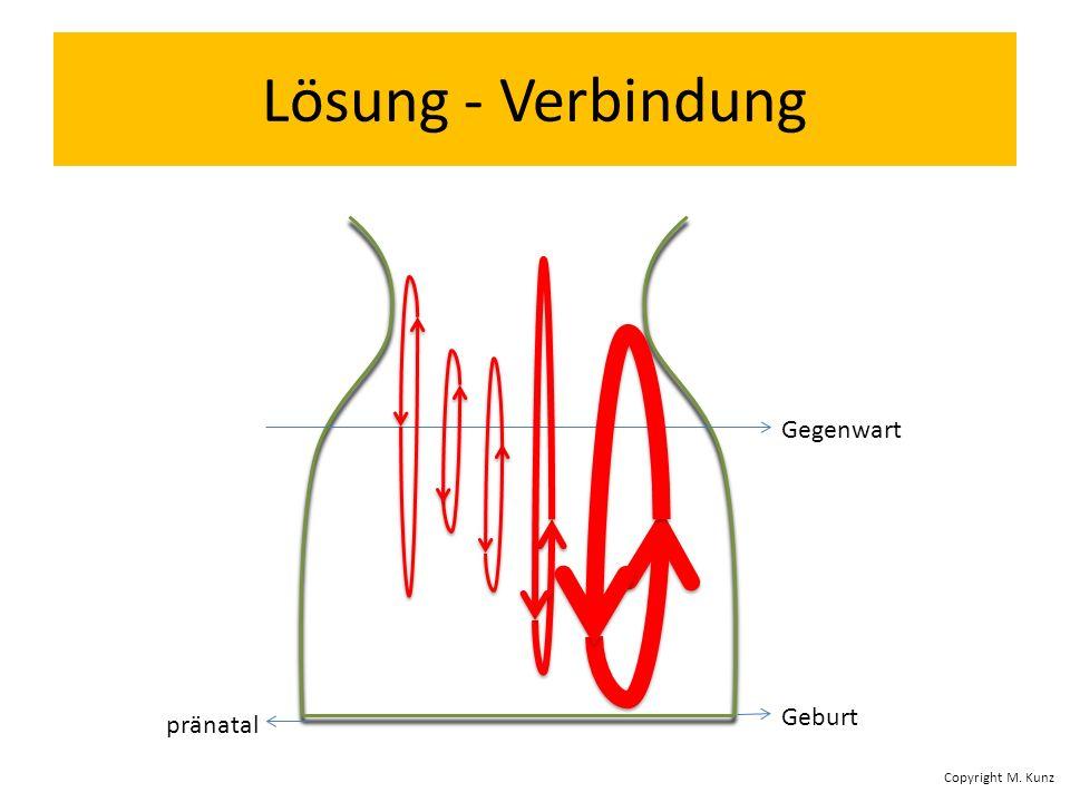 Lösung - Verbindung Gegenwart Geburt pränatal Copyright M. Kunz