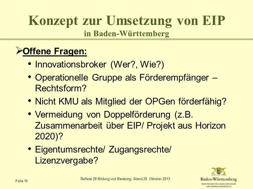 Konzept zur Umsetzung von EIP in Baden-Württemberg