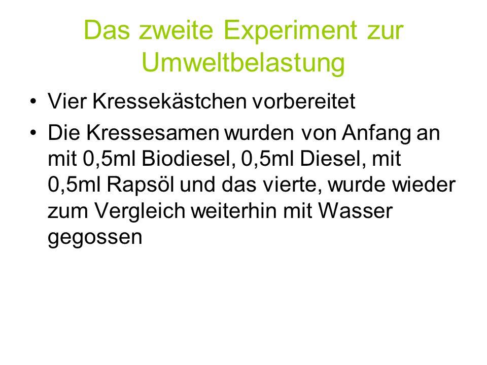 Das zweite Experiment zur Umweltbelastung