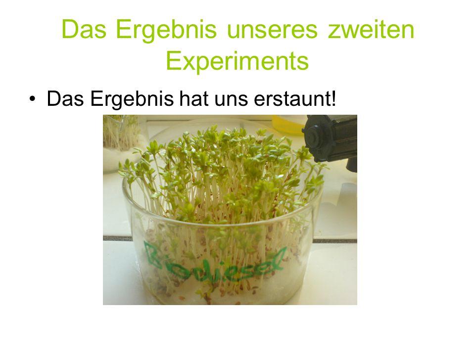 Das Ergebnis unseres zweiten Experiments