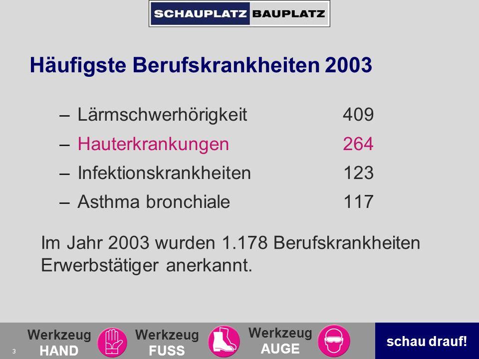 Häufigste Berufskrankheiten 2003