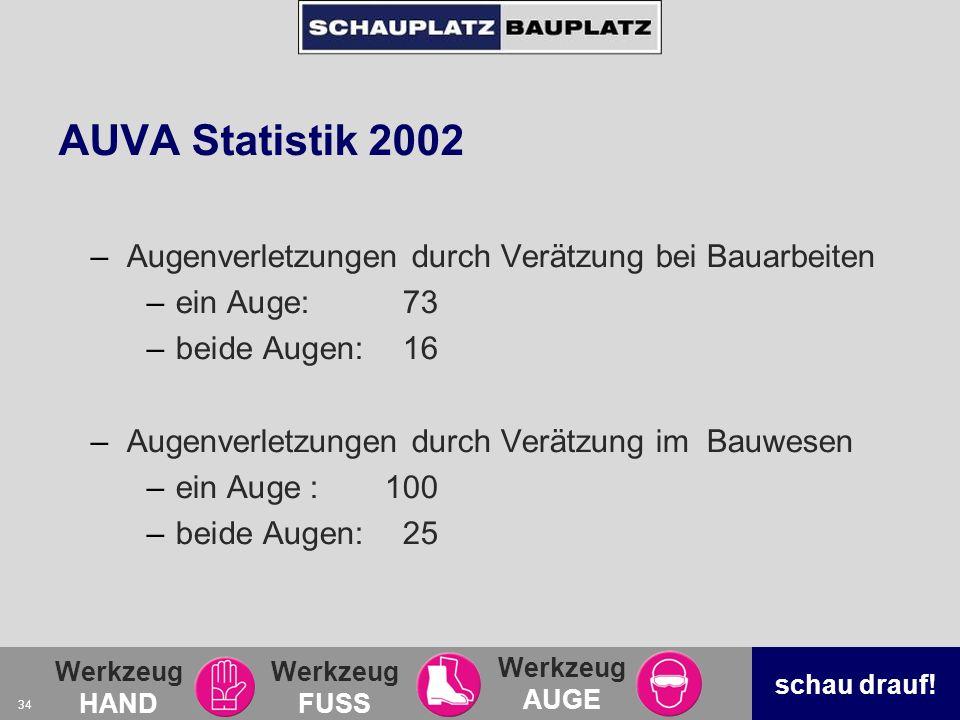 AUVA Statistik 2002 Augenverletzungen durch Verätzung bei Bauarbeiten