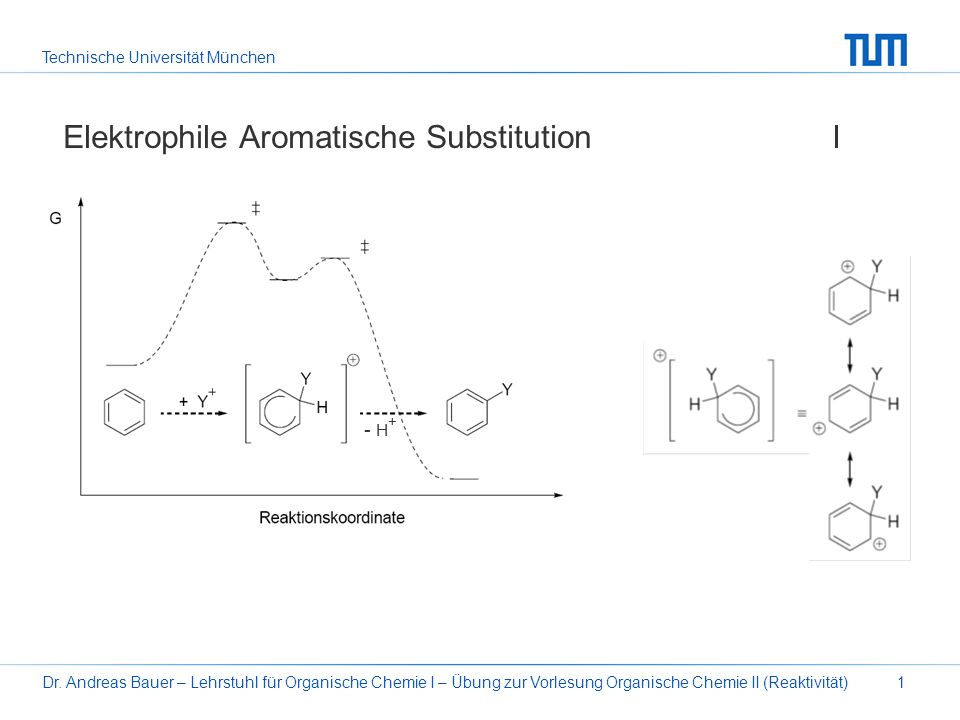 Elektrophile Aromatische Substitution I
