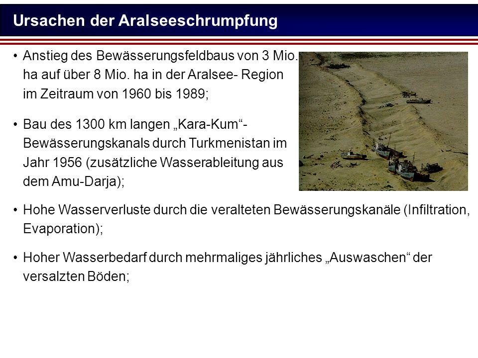 Ursachen der Aralseeschrumpfung