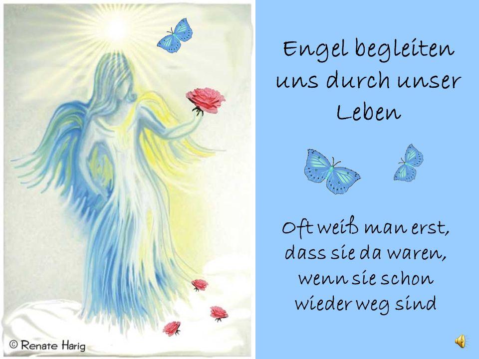 Engel begleiten uns durch unser Leben