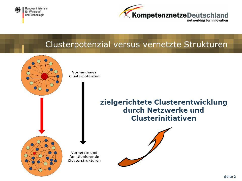 Clusterpotenzial versus vernetzte Strukturen