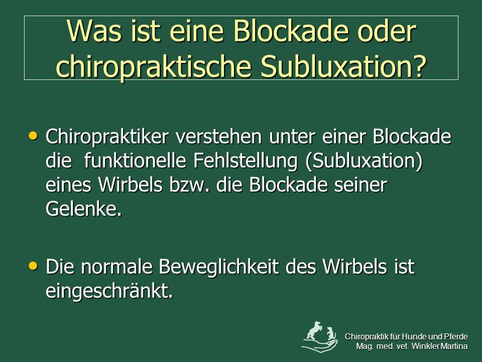 Was ist eine Blockade oder chiropraktische Subluxation
