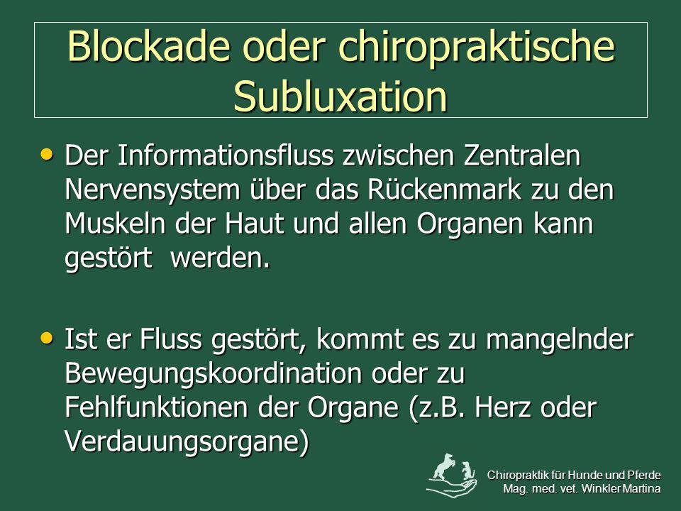 Blockade oder chiropraktische Subluxation