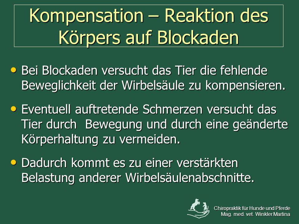 Kompensation – Reaktion des Körpers auf Blockaden