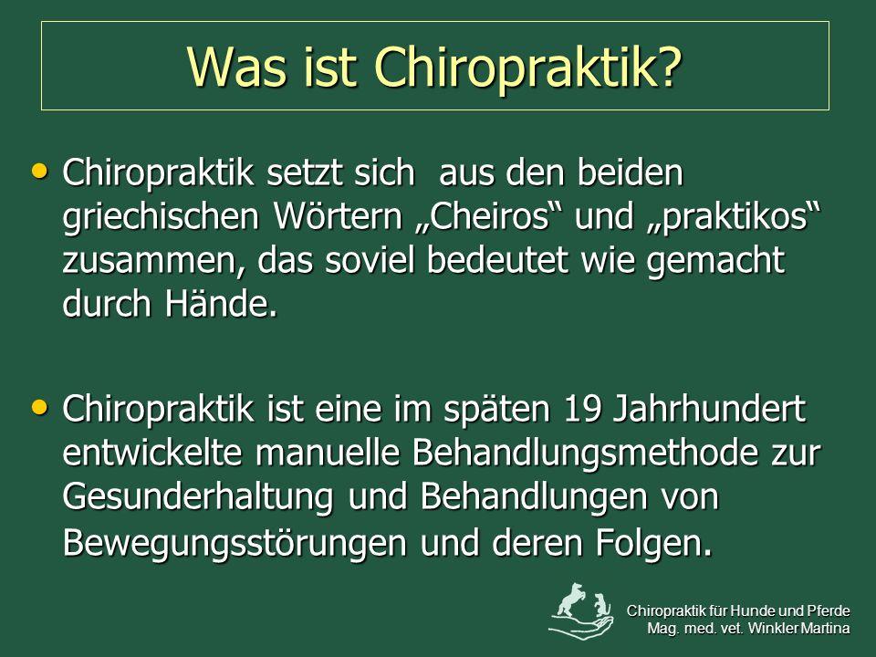 Was ist Chiropraktik