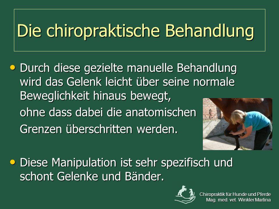 Die chiropraktische Behandlung