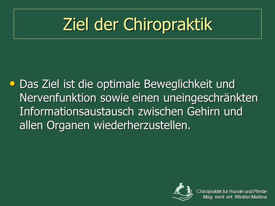 Ziel der Chiropraktik