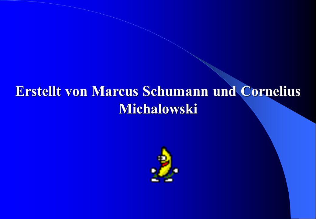 Erstellt von Marcus Schumann und Cornelius Michalowski