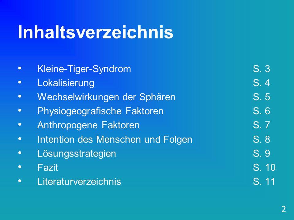 Inhaltsverzeichnis Kleine-Tiger-Syndrom S. 3 Lokalisierung S. 4