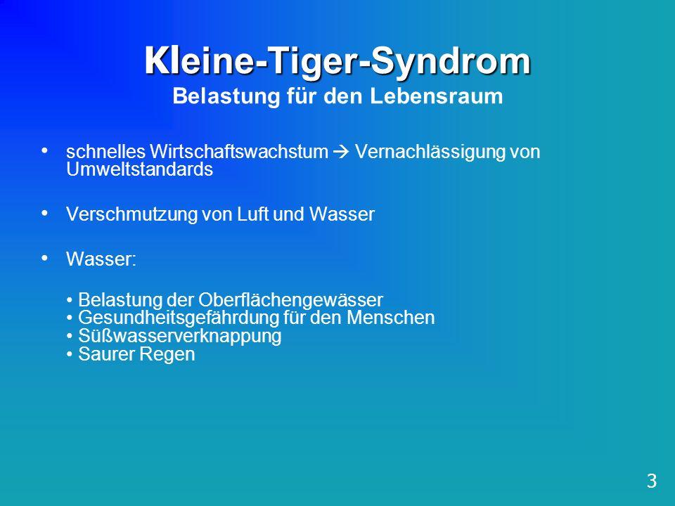 Kleine-Tiger-Syndrom Belastung für den Lebensraum