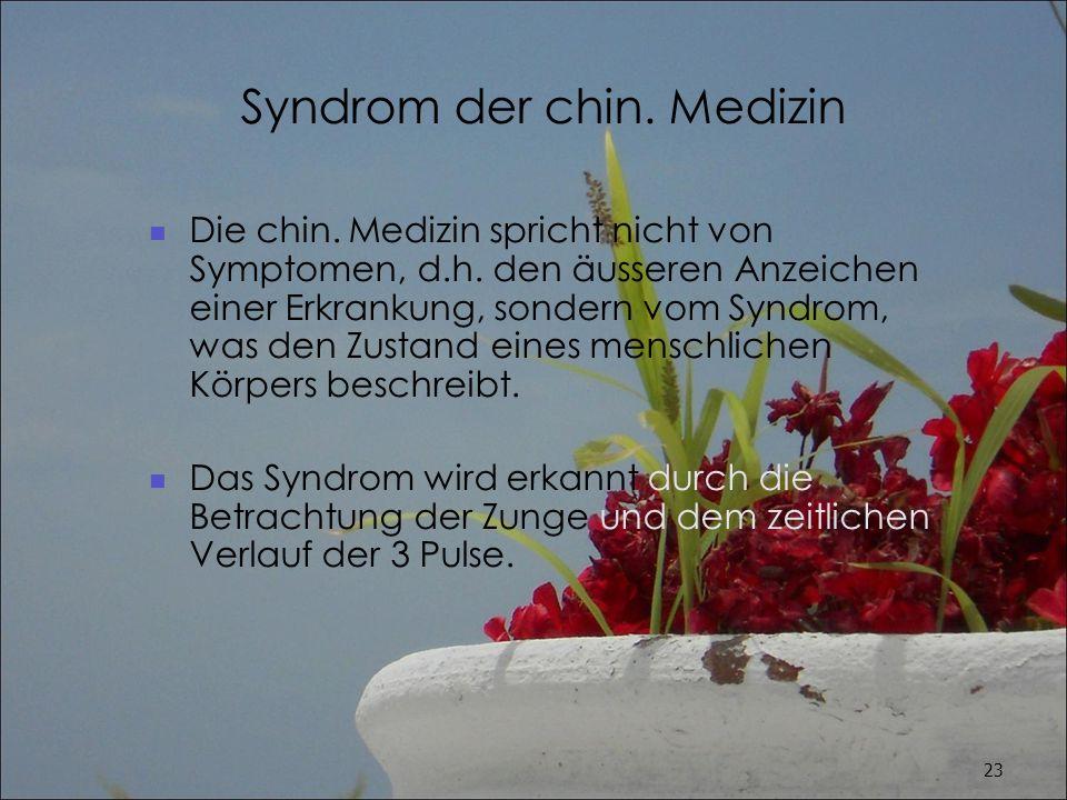 Syndrom der chin. Medizin