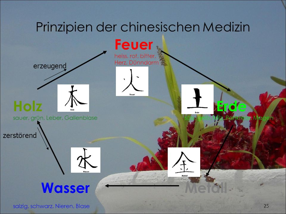 Prinzipien der chinesischen Medizin
